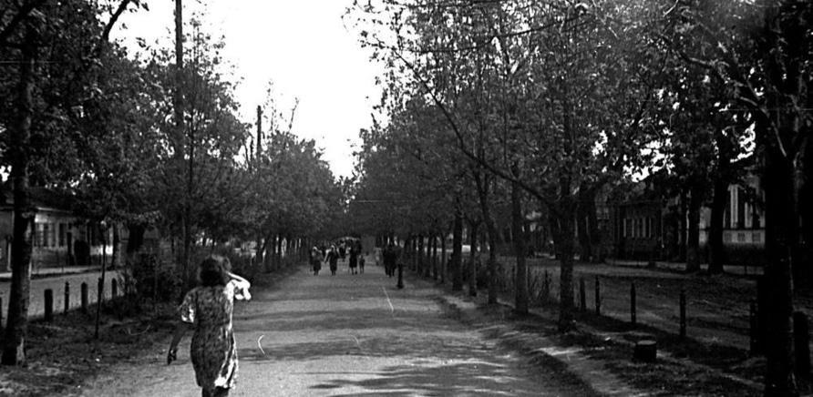 Фото 2 - Бульвар Шевченко в 1947 году