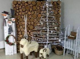 Статья 'Альтернативные елки: 6 вариантов, которые можно купить в Черкассах'