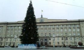 Статья 'Черкасская елка – самая пушистая в Украине'
