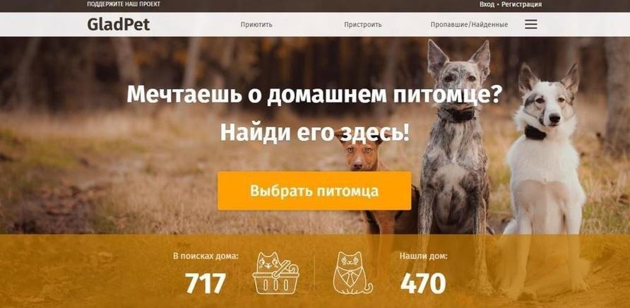 Фото 1 - Черкассы могут присоединиться к онлайн-сервису помощи бездомным животным