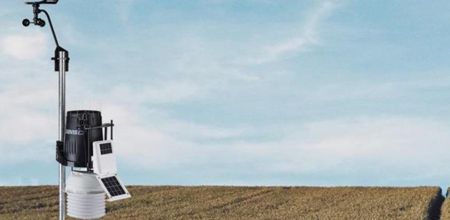'Наблюдай за полем через Wi-Fi: черкасский студент облегчит жизнь фермерам'