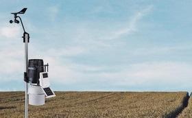 Стаття 'Спостерігай за полем через Wi-Fi: черкаський студент полегшить життя фермерам'