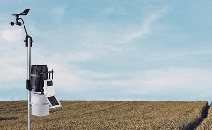 'Спостерігай за полем через Wi-Fi: черкаський студент полегшить життя фермерам'