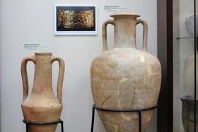 Стаття '10 причин відвідати Черкаський археологічний музей'