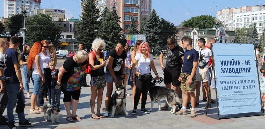 ' Украина – не живодерня: черкасщане вышли на защиту бездомных животных'