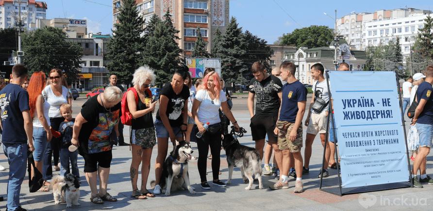 Фото 1 - Украина – не живодерня: горожане вышли на защиту бездомных животных
