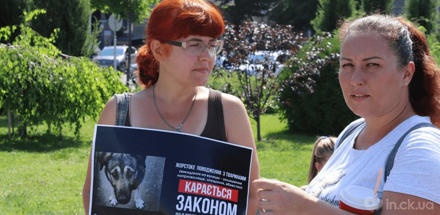 Фото 3 - Украина – не живодерня: горожане вышли на защиту бездомных животных
