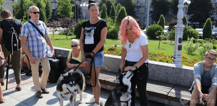 Фото 5 - Украина – не живодерня: горожане вышли на защиту бездомных животных