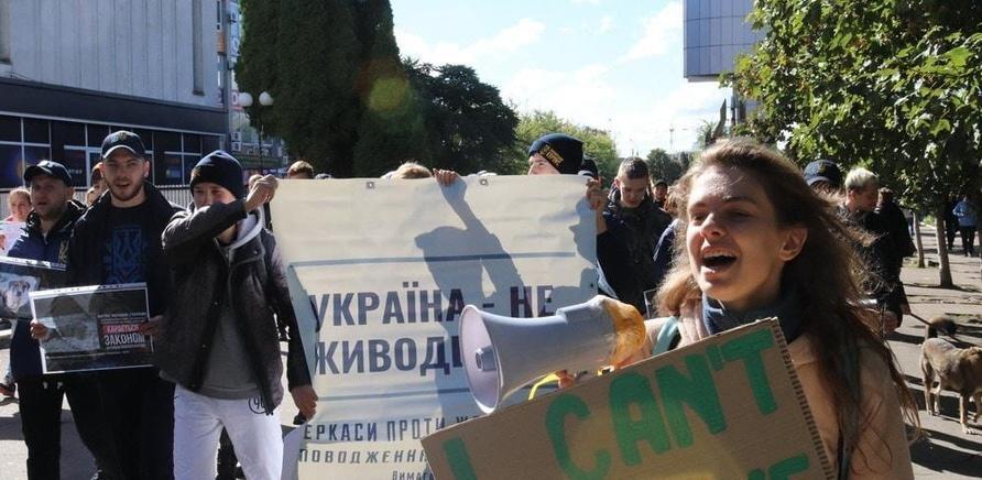 'Выйди за меня: в Черкассах прошел марш в защиту прав животных'