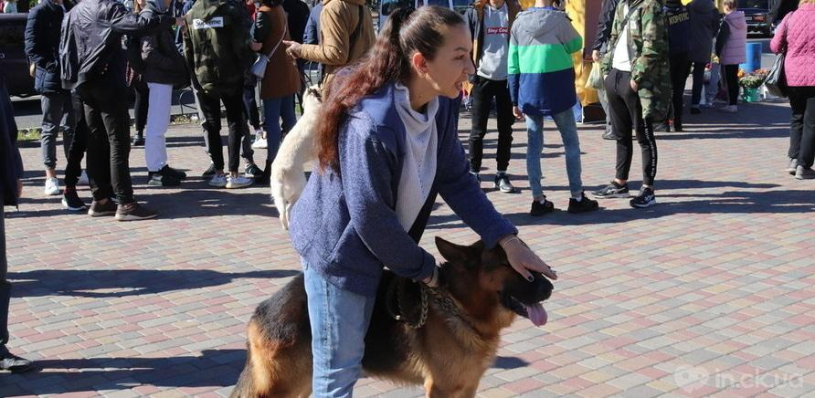 Фото 1 - Выйди за меня: в Черкассах прошел марш в защиту прав животных