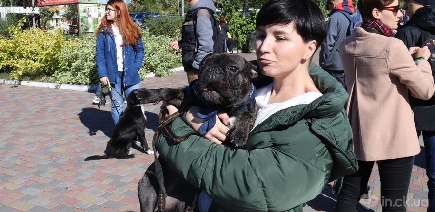 Фото 3 - Выйди за меня: в Черкассах прошел марш в защиту прав животных