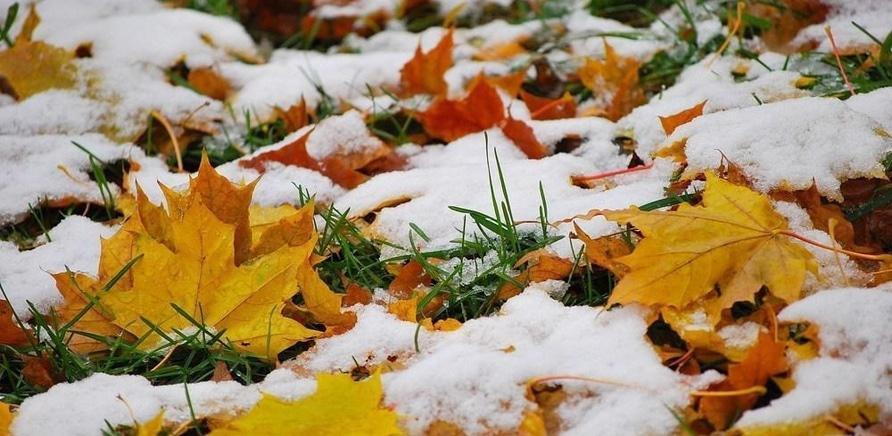 'Только спокойно: вскоре в Черкассах выпадет мокрый снег'