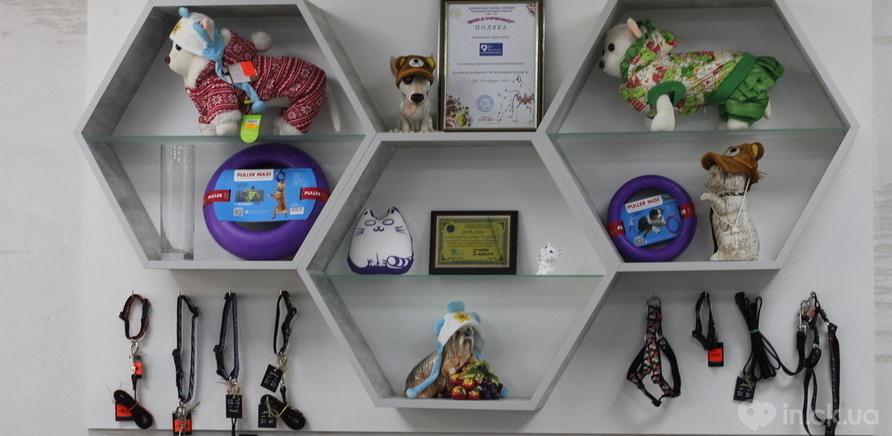 """Фото 1 - Вылечат и прихорошат: в Черкассах открылся еще один центр """"ВетЕксперт"""""""