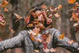 Стаття 'ЧеВікенд: дайджест подій із 8 по 10 листопада'