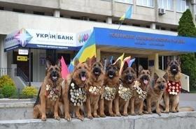 Черкасский областной клуб служебного собаководства общества содействия обороне Украины