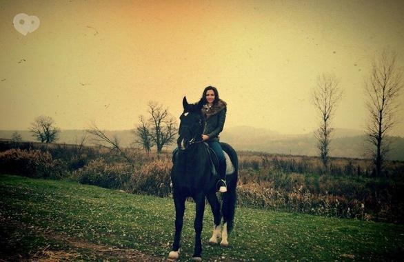 Фото 4 - Домашняя конюшня PEGAS