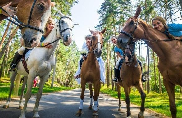Фото 5 - Домашняя конюшня PEGAS