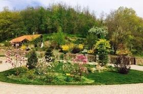 Мастерская садовых искусств, ландшафтное озеленение