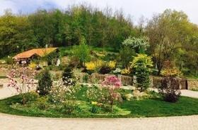Мастерская садовых искусств, ландшафтный дизайн