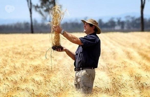 Фото 1 - Общественная организация Союз аграрной молодежи