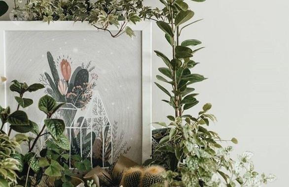 Фото 5 - Цветочное кафе Botanica