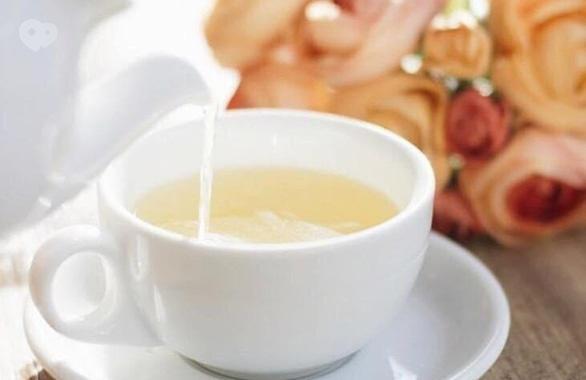 Фото 6 - Цветочное кафе Botanica