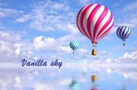 Туристическое агенство Vanilla sky, Туристическое агенство