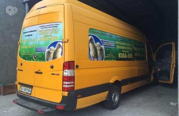 Фото 4 - Переробка та торгівля інкубаційного яйця, торгівля добових курчат Інкубаційна станція Птахи України