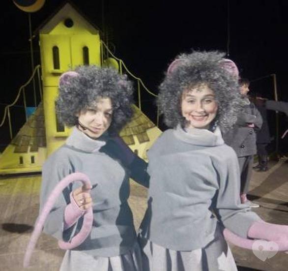 Театр - Музыкальная сказка для детей 'Все мыши любят сыр'