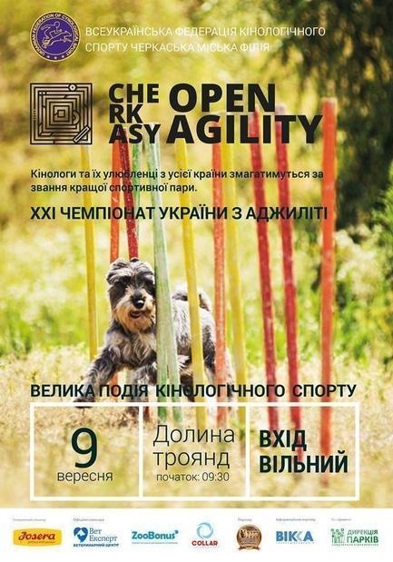 Спорт, отдых - XXI Чемпионат Украины по аджилити – 2017