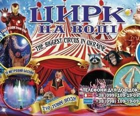 "'Цирк на воде ""Shekera""' - in.ck.ua"