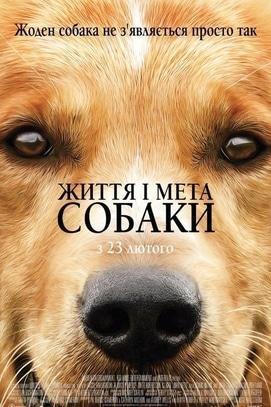 Фильм - Жизнь и цель собаки