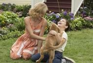 Фильм'Жизнь и цель собаки' - кадр 1