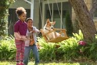 Фильм'Жизнь и цель собаки' - кадр 2