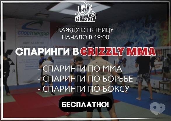 Спорт, отдых - Спарринги в клубе смешанных единоборств 'Grizzly MMA'