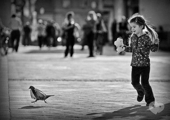 Выставка - Фотовыставка молодых фотохудожников 'Лови мгновение'