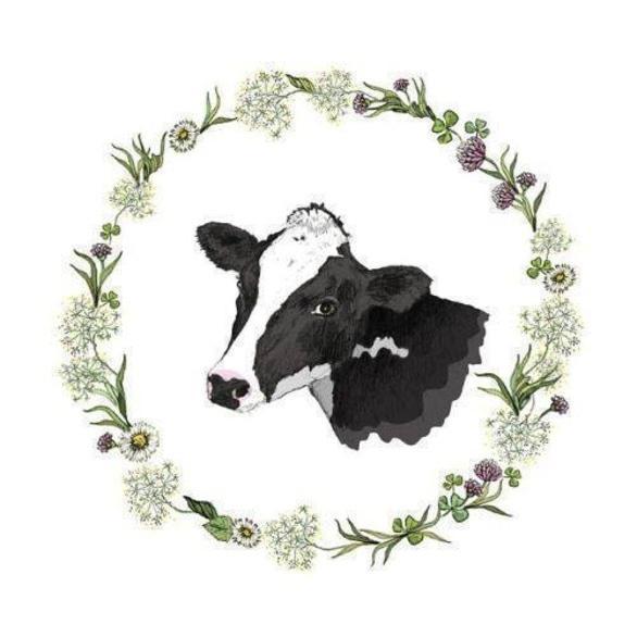 Обучение - Клуб вегетарианства