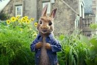Фільм'Кролик Петрик' - кадр 1