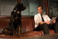 Фильм'Полицейский пес' - кадр 2