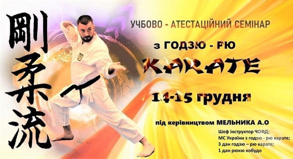 Спорт, отдых - Учебно-аттестационный семинар по Годзю-Рю Каратэ