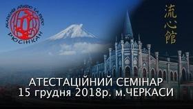 "Аттестационный семинар Академии Айкидо и Будо ""Рюсинкан"""
