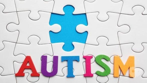 Обучение - Лекции на темы  'Аутизм' и 'Инклюзия'