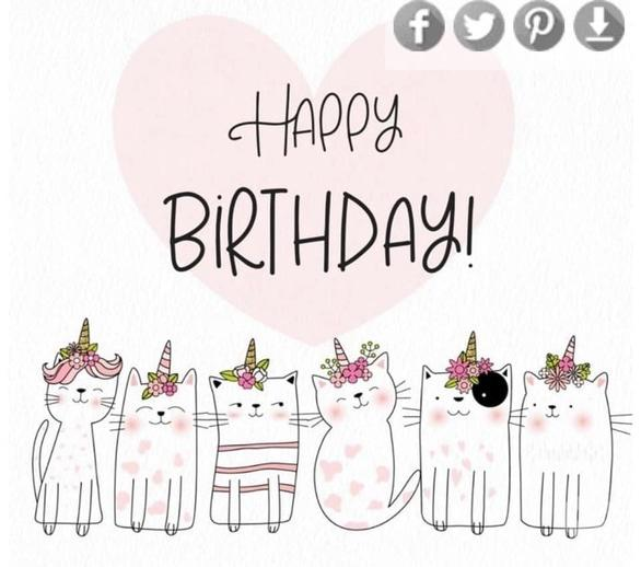 happy-birthday-party-v-cat-cafe.8.jpeg?1