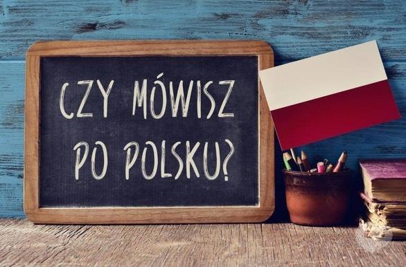 Обучение - OASIS Polski Funclub