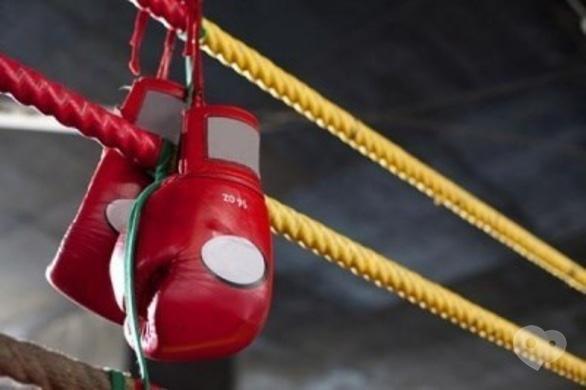 Спорт, отдых - Чемпионат Черкасской области по боксу им. А. Дашковича