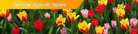Весна на пороге! Предлагаем лучшие цветочные туры по Украине!