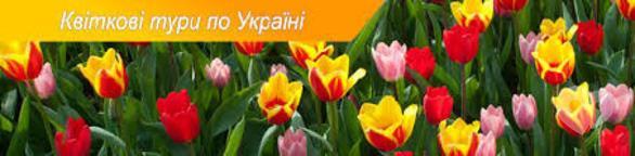 Спорт, отдых - Весна на пороге! Предлагаем лучшие цветочные туры по Украине!