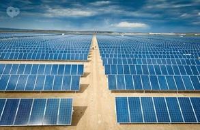 Фишка Solar Garden