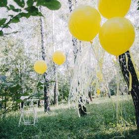 Свадьба - Воздушные шары