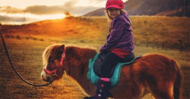 Кентаврик, пони-клуб - Катание на пони и лошади